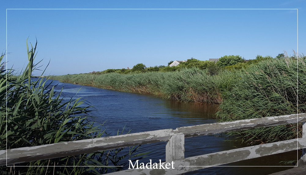Madaket Vacation Rentals